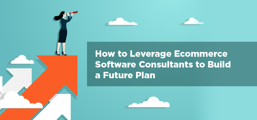 Future Planning & The Role of Ecommerce Software Consultants | Acro Media