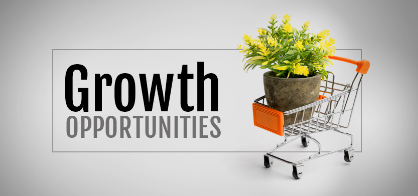 Find Growth Opportunities With an Ecommerce Consultants | Acro Media
