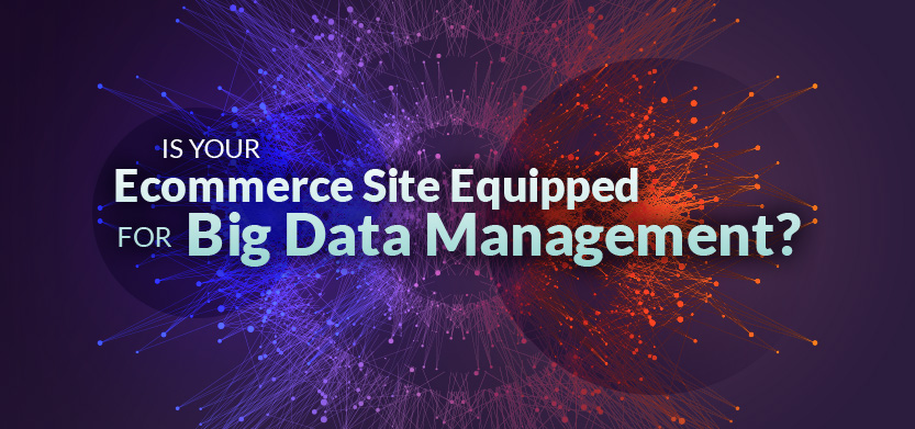 Is Your Ecommerce Site Equipped for Big Data Management? | Acro Media