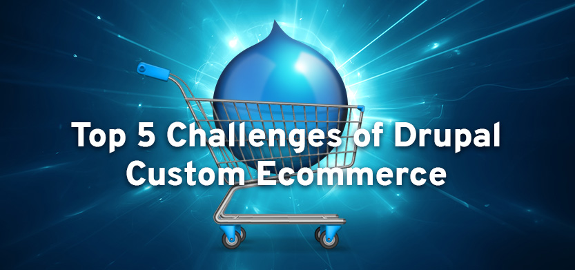 Top 5 Challenges of Drupal Custom Ecommerce Development and an Ideal Solution